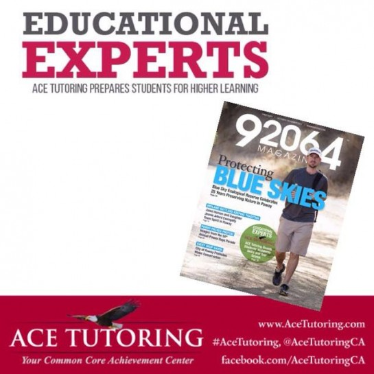 Ace Tutoring